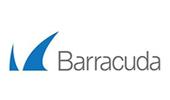 Baracuda